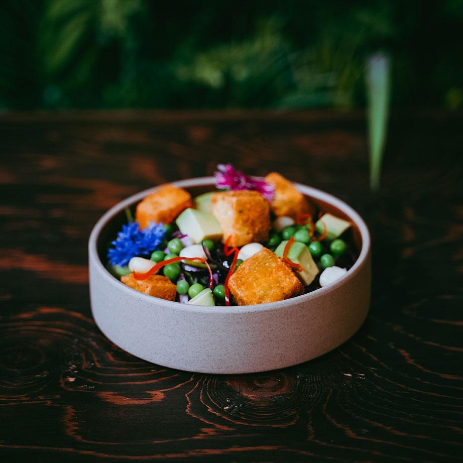 Salade_La_Tofu